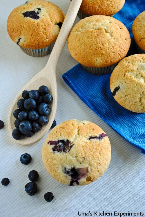 blue-berry-muffins-1