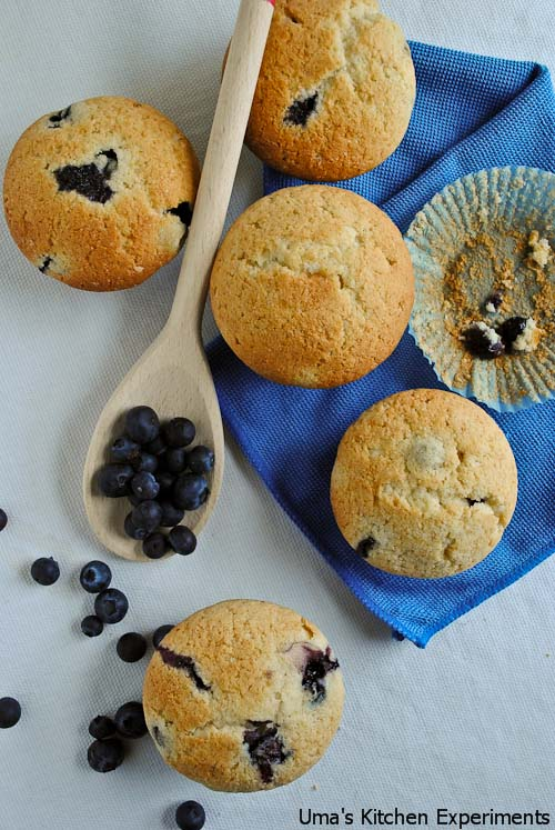 blue-berry-muffins-3