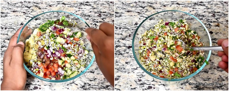 sprouted-moong-salad-stp4